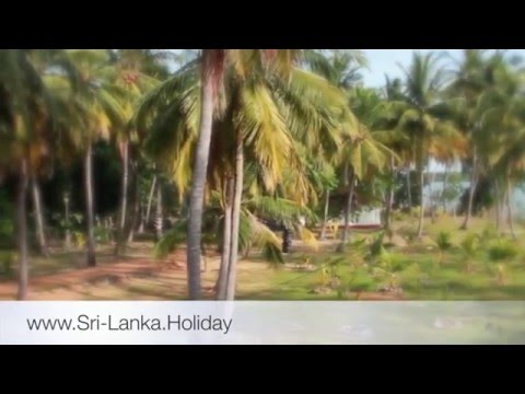 Sri Lanka Holiday Home