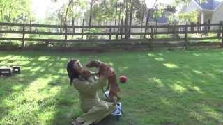 Dog Training, Vizsla, Day 1: Teaching Recall, Follow And Free