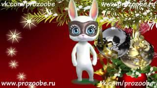 С Новым Годом 2017 ❄❄❄ Поздравление с новым годом от ZOOBE Зайки домашней хозяйки
