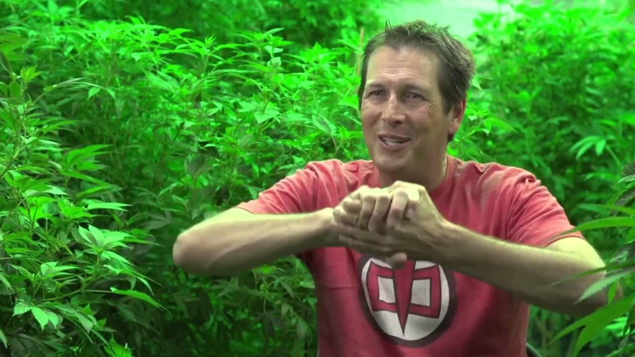 Pot Barons Medicine Man Meet Pete Williams - YouTube