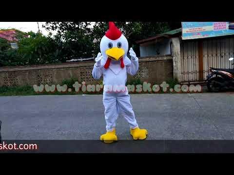 Kostum Badut - Maskot Ayam Lucu dan menggemaskan