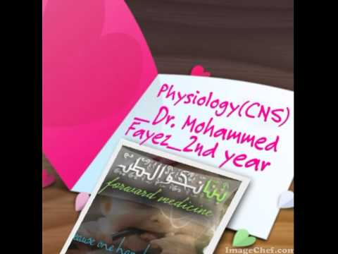 Dr   Mohammed Fayez CNS 7 Basal ganglia
