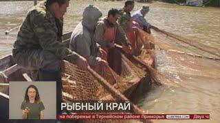 Рыбный край. Новости. 14/08/2020. GuberniaTV