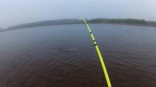 Поймал-отпустил. Рыбалка в Магадане.