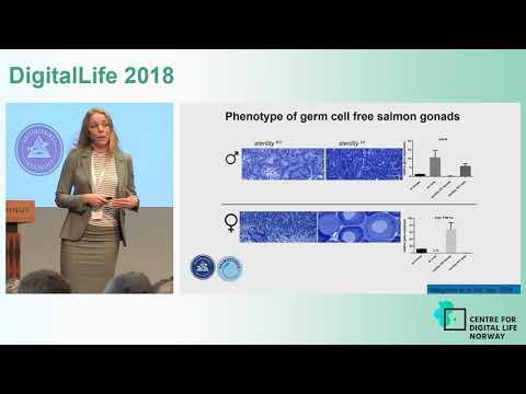 DigitalLife 2018 Anna Wargelius IMR