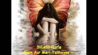 Mein Aur Meri TanHayee