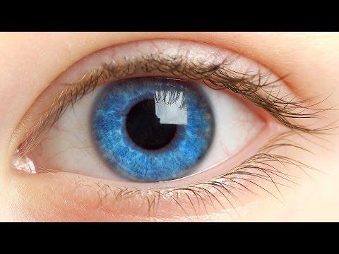 Красные веки глаз - причины у взрослого человека. Лечение