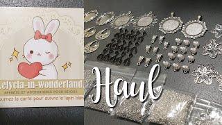 Haul - Elycla in Wonderland #7