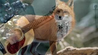 Паломничество. Жаворонок. Странники. В мире животных на гитаре. (La peregrinacion, Alouette)
