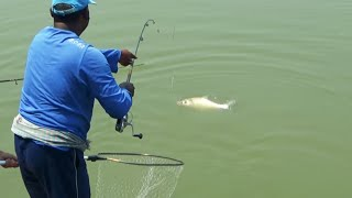 Really Nice Catla Fishing Video Scenes By Fish Watching