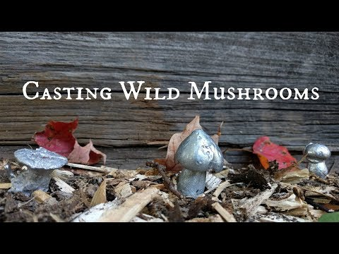 Casting Wild Mushrooms