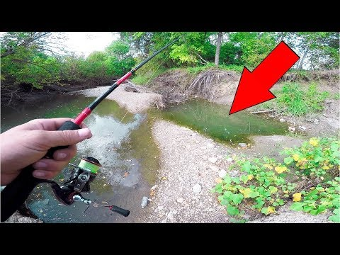 Fishing TINY HIDDEN Creeks In Texas