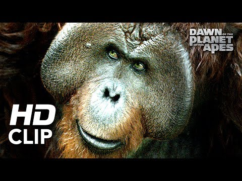 Dawn of the Planet of the Apes   'Hanging Out'   Clip HD