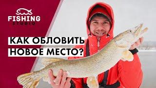 Как обловить новое место Где стоит судак Рыбалка на подъеме воды ВихровLIFE