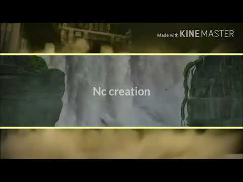 NC Creation