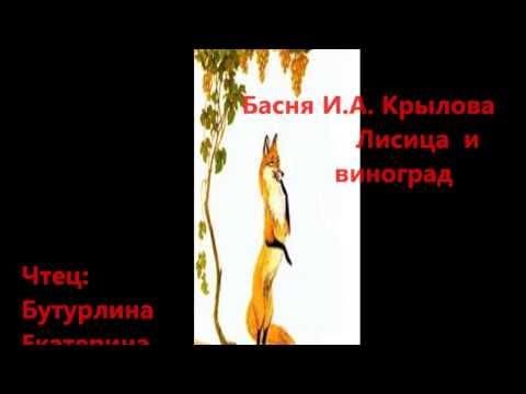 Страна читающая – Екатерина Бутурлина читает произведение ...