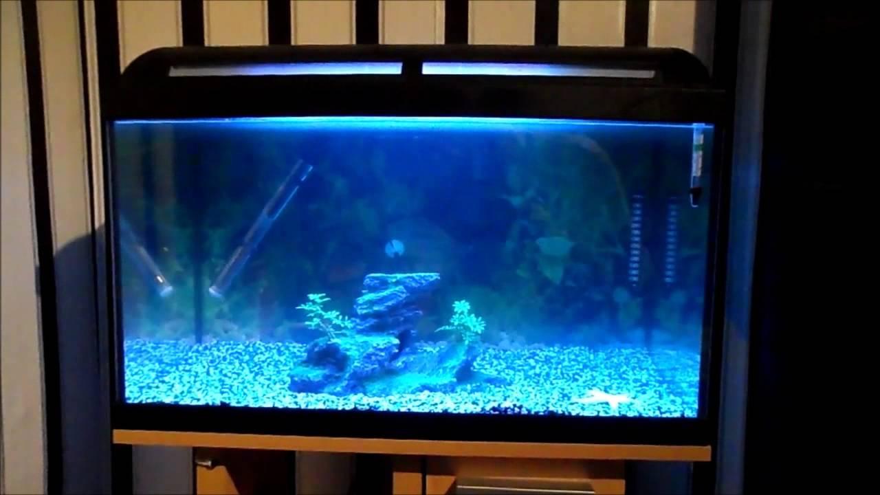 aquarium abdeckung 60 30 cm 15 watt schwarz inkl beleuchtung bunte. Black Bedroom Furniture Sets. Home Design Ideas