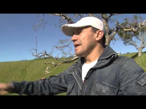 PERUANOS EN EL MUNDO: NUEVA ZELANDA