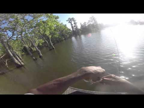 Fishing Pack's Landing for Shellcrackers