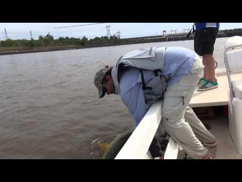 TOPWATER FISHING FOR BIG DORADOS 2 LA ZONA
