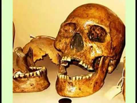 Jim Vieira - Adena Remains in Ancient America