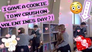 Valentines Day at My Japanese High School! (JAPAN EXCHANGE)