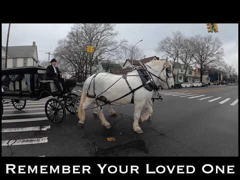 Committed Funeral Horse Carriage Rental Services in NY & NJ