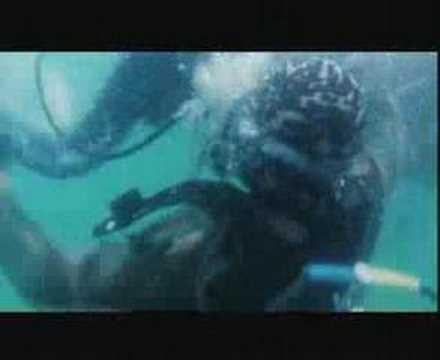 UW scene in Hong Kong movie