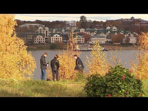 В Заволжском парке Костромы заложили кедровую аллею