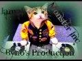 Download Vybz kartel ft Aidonia-badman addi nuh throw wud MP3 song and Music Video