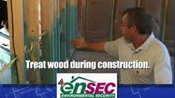 Decayed wood attracts termites.