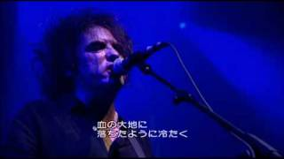 THE CURE - A SHORT TERM EFFECT (2002)