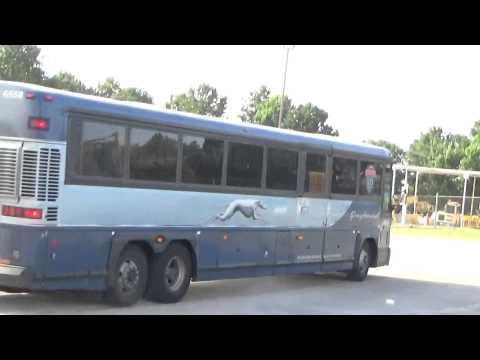 Greyhound Buses 7-9-15
