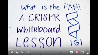 What is the PAM? - A CRISPR Whiteboard Lesson