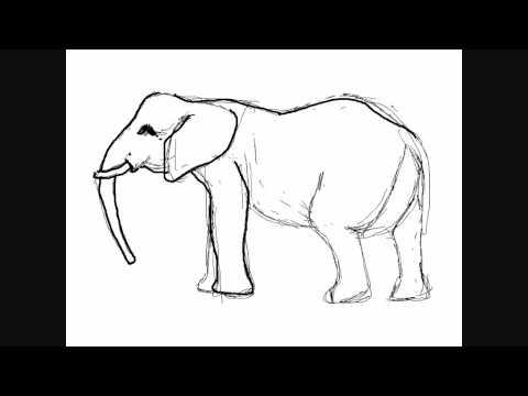 Dibujar elefantes - Dibujos para Pintar - YouTube
