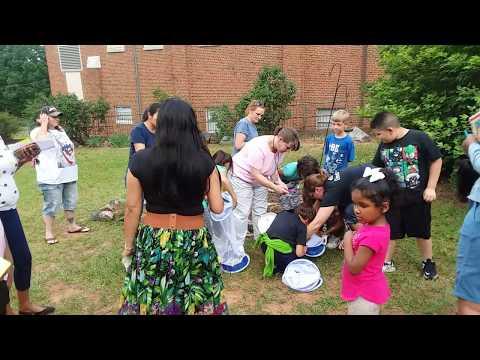 Butterfly Release at Albert Harris Elementary School