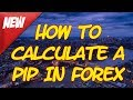 How To Calculate A Pip In Forex  ► Forex Basics For Beginners