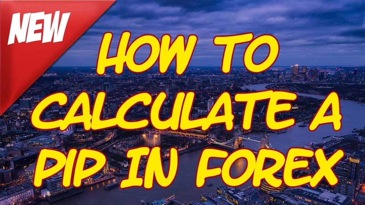 How to count pips on forex