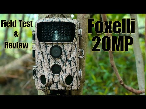 foxelli-20mp-trail-camera-field-test-and-review:-sample-video-included!!
