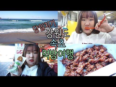 [원츄의일상] 당일치기 강원도 속초 먹방여행 -VLOG