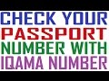 check your passport number with iqama number saudi arabia