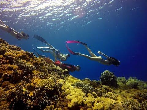 自由潛水 綠島潛旅/freediving Taiwan divetrip