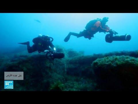 تعرف إلى عملية -الصيد الشبحي- التي تهدد البيئة البحرية  - نشر قبل 47 دقيقة