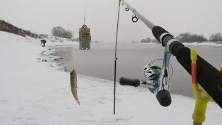 Рыбалка на фидер зимой на реке в новом месте. Как поймать плотву