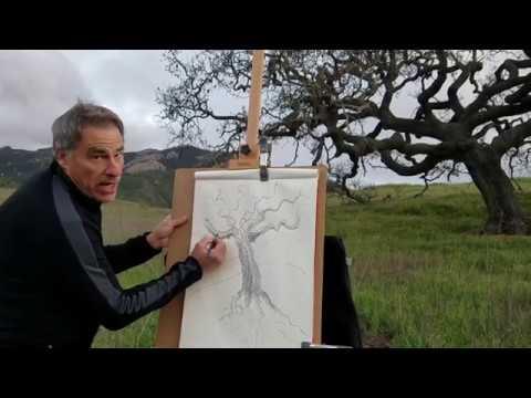 Joe Adams SCI Art lessons 1-3