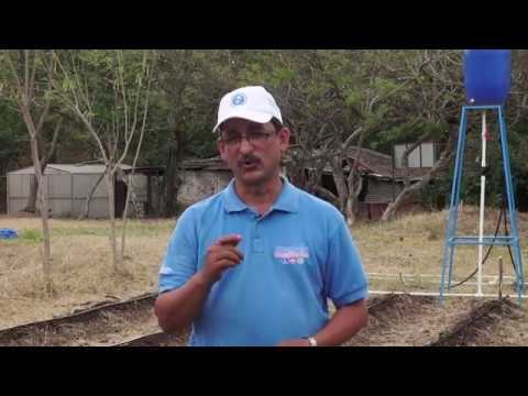 Vamos Adelante | ¿Cómo realizar un Sistema de Riego por Goteo? #SoyTecNicaragua