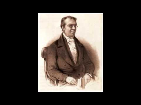 Johann Wilhelm Wilms - Sonata for flute and piano, Op. 33