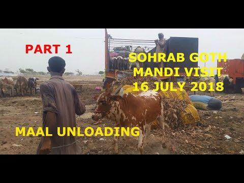 Maal Unloading - Sohrab Goth Mandi Visit 16 July 2018 - Part 1