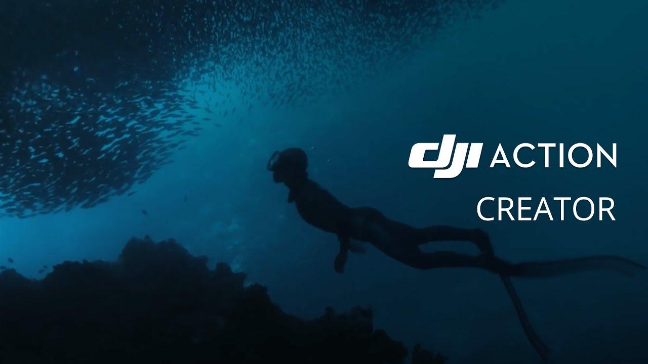 DJI Osmo Action - Pływając wśród sardynek (PL) DJI ARS