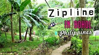 zipline in bohol philippines